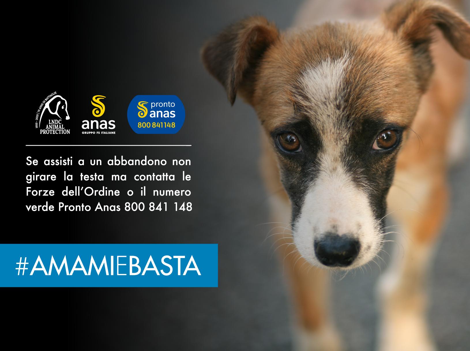 Locandina campagna #AmamieBasta 2020