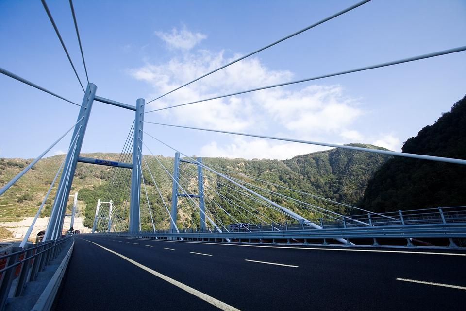Autostrada del Mediterraneo, Viadotto Favazzina