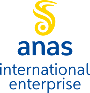 Logo Anas International Enterprise