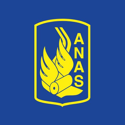 Assunzioni Anas