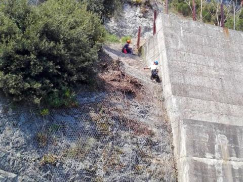 Operazioni di disgaggio lungo l'Aurelia a Savona